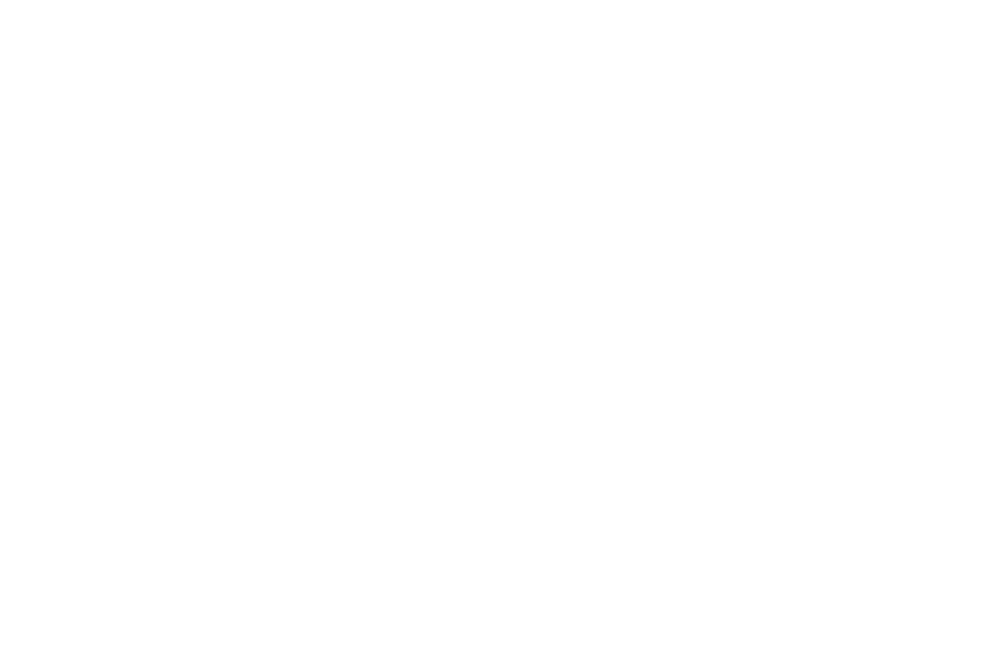 Nathan Sports Logo